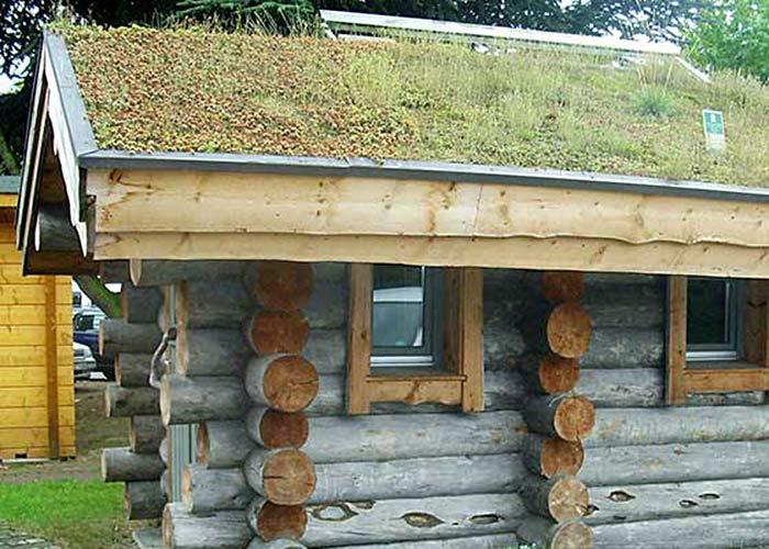 Eine Spezialität von Müther Saunabau: Kelosaunen aus dem Holz der Kelo-Kiefer